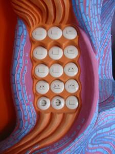 Schalter im Wohnzimmer